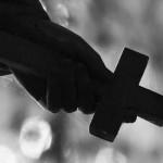Die Bedeutung des Kreuzes spielt für Spinnen keine Rolle.