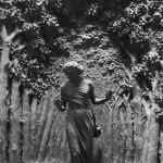 """""""Ich ging im Walde so für mich hin, und nichts zu suchen, das war mein Sinn…"""" (Goethe)"""