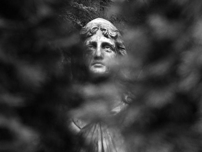 Alter Katholischer Friedhof, Dresden