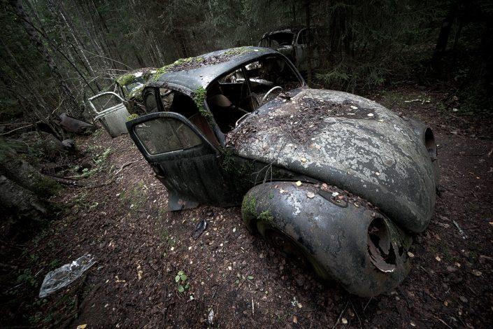 Der Wald der toten Automobile