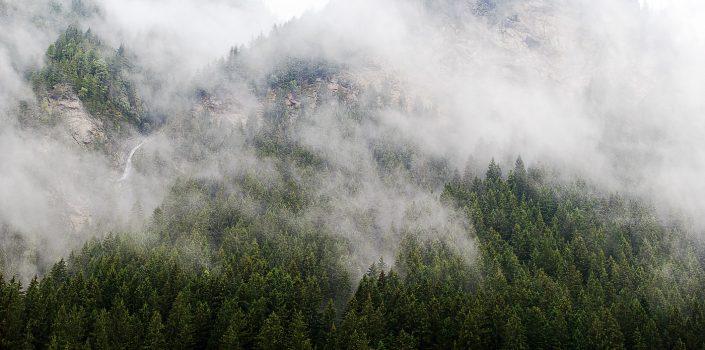 """""""Im Nebel ruhet noch die Welt..."""""""