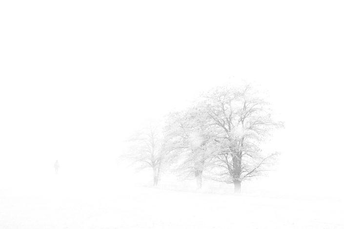 Spaziergang im Schneegestöber